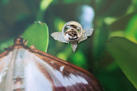 Moth Lapel Pin