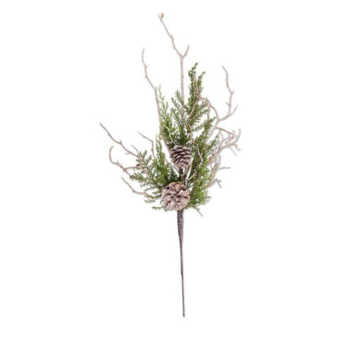 Juniper Berry Stem with Twigs & Pinecones