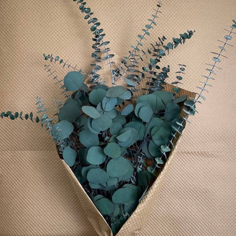Beautifully preserved bundle of silver dollar and baby eucalyptus stems, in textured farmers market paper wrap, 28 in. H