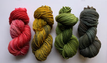 Load image into Gallery viewer, Bulky Hand Dyed Wool Yarn