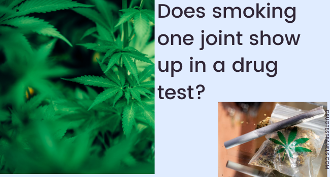 does smoker shows up in drug test