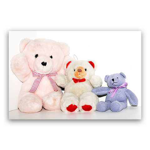 Why Plush and Stuffed Animals Are Not Just For Children