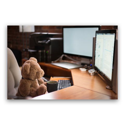 3 Reasons Why Plush & Stuffed Animals Make the Best Office Desk Decorations!