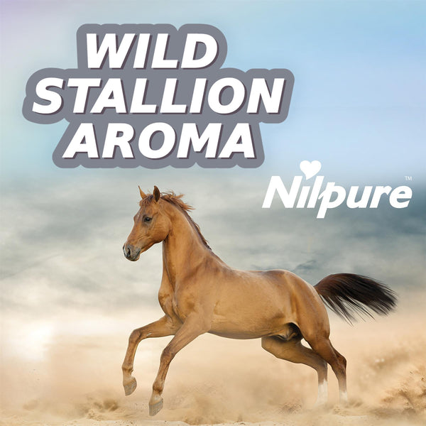 Nilco Nilpure Moisturising Fragranced Wild Stallion Scented Hand Sanitiser -100ml
