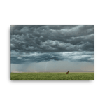 Load image into Gallery viewer, One horse and a lightning storm by Bruno Gonçalves