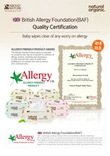 Load image into Gallery viewer, Natural Organic Baby Wipes Original Plain With Cap 100 Sheets Wet Tissues (1 Pack)