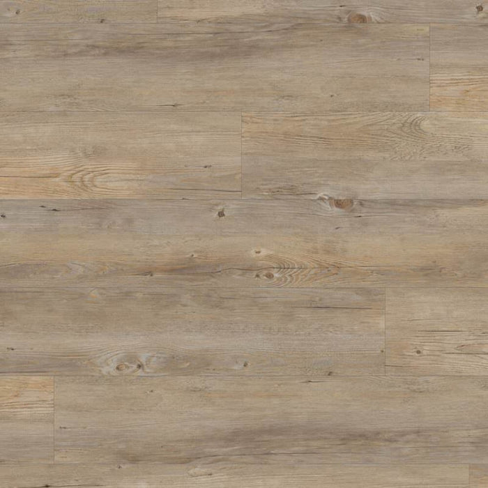 Amtico First Commercial Wood Bleached Elm SF3W2516