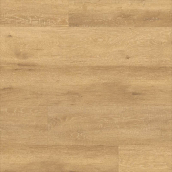 Amtico Spacia Limed Wood Natural SS5W2549