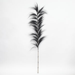Tropical Hay Stalk Black