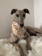 Mini Donuts Bandana - William Wagtail
