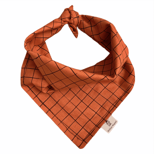 Striped Pumpkin Bandana - William Wagtail
