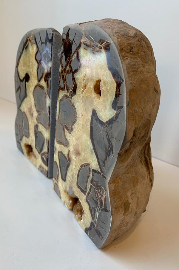 Septarian Bookends