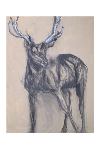 Standing Stag I