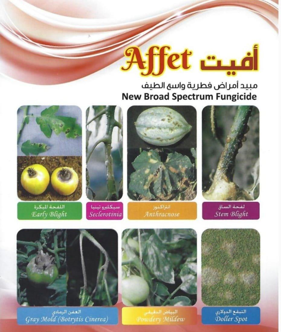 Affet New Broad Spectrum Fungicide (QTY - 250ml)