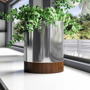 Stainless steel Circular planters | Mirror finishing