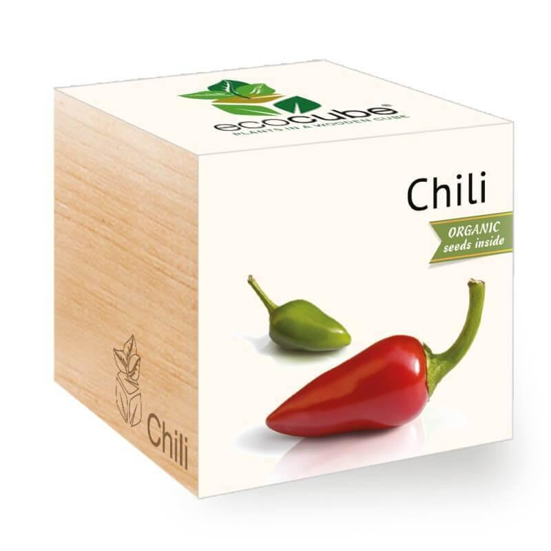 chili-ecocubes-online-in-dubai-uae
