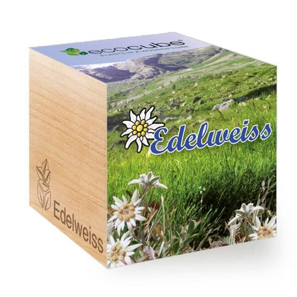 edelweiss-ecocubes-online-in-dubai-uae