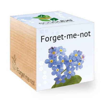 forget-me-not-ecocubes-online-in-dubai-uae