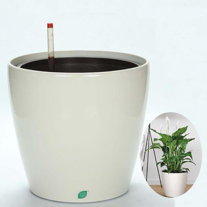Self Watering Round Plastic Planter