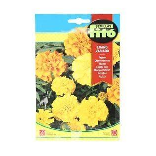 semillas-fito-french-marigold-dwarf-mix-flower-seeds-plants-online-in-dubai-uae