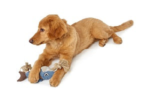 SaltyDOG Australian Pet Products - Dog Toys