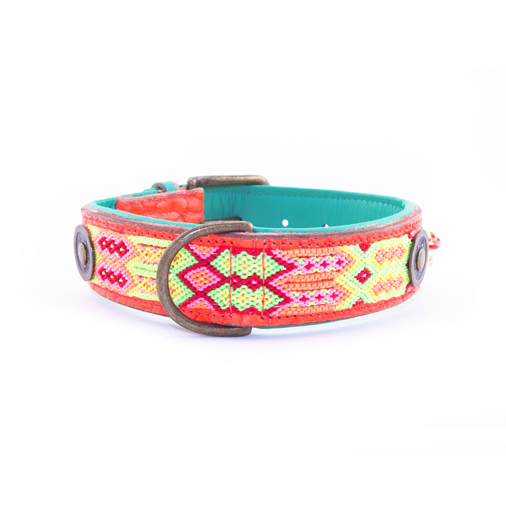 Ginger dog collar