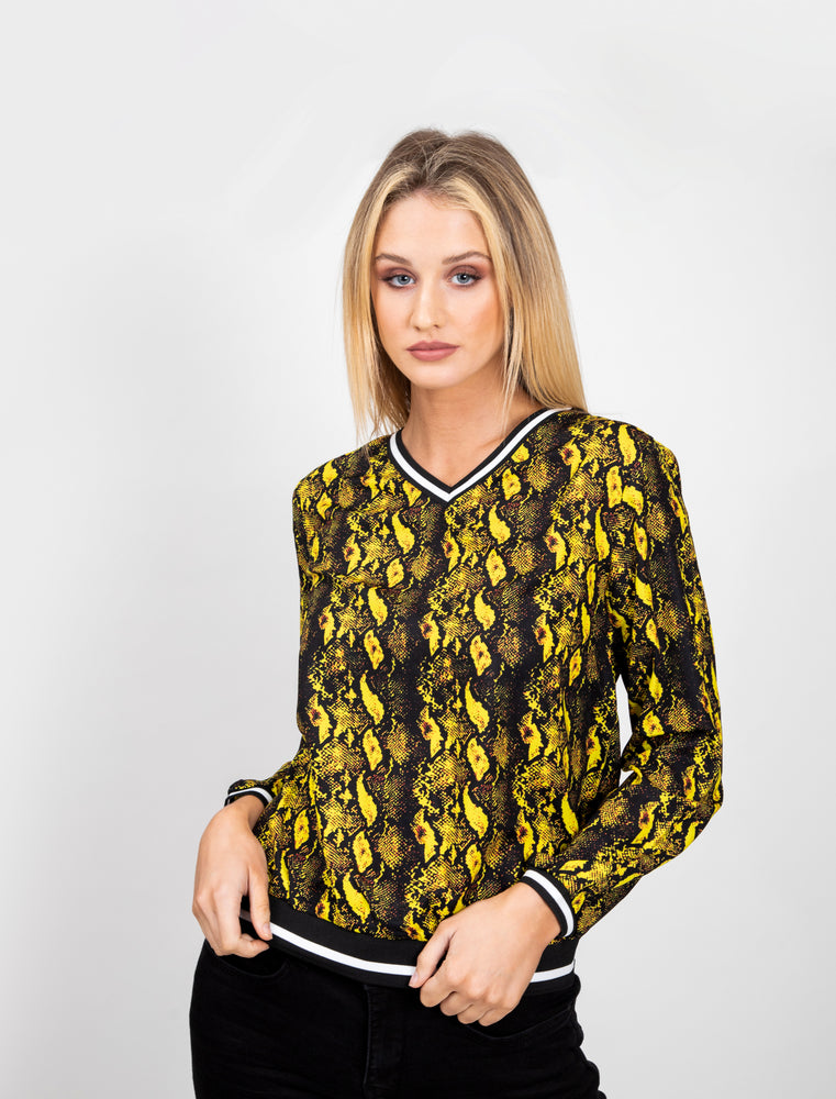 Electric Leopard Print V Neck Top