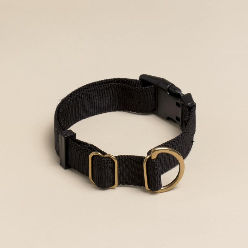 Black Pack Collar