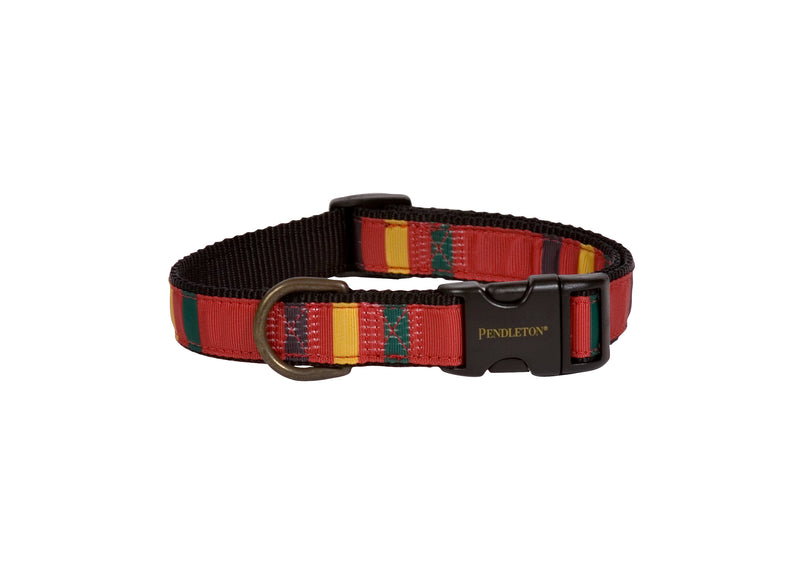 Mount Rainier Dog Collar