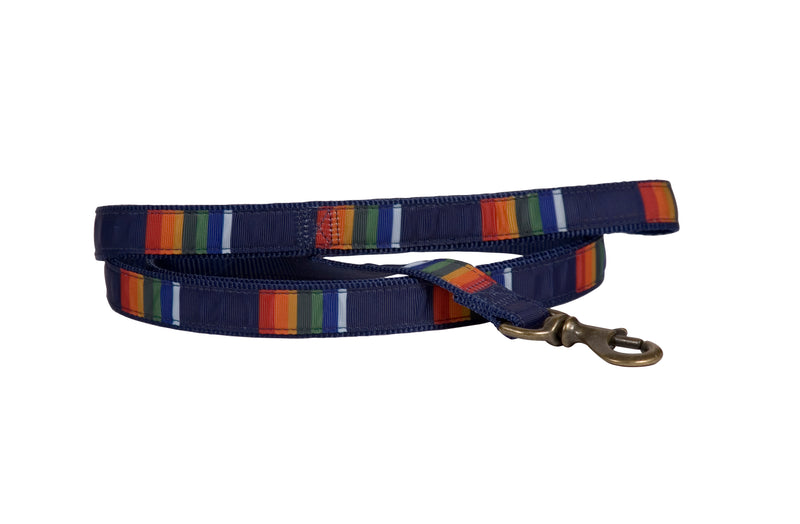 Crater Lake Dog Leash