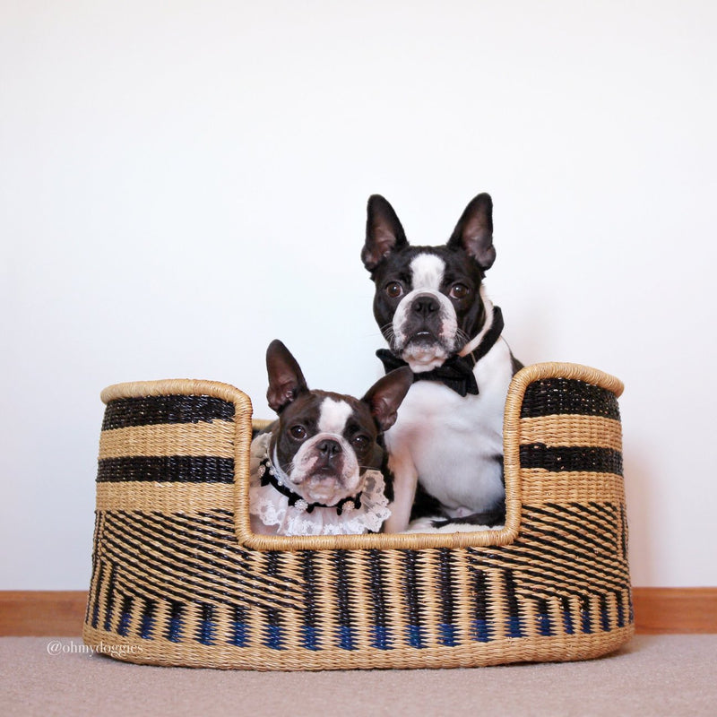Handcrafted Dog Bed Bear Patterns