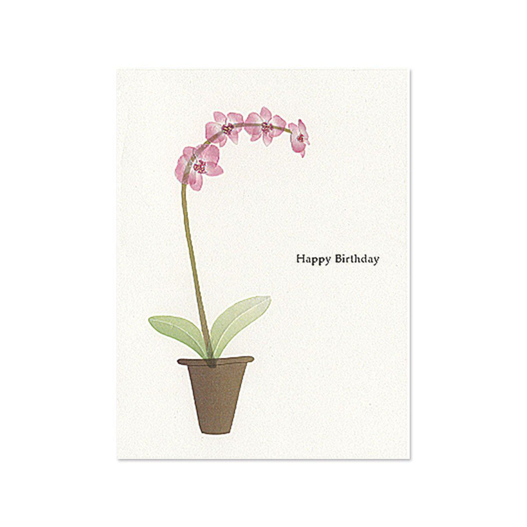 PAPYRUS  Happy Birthday - pink orchid