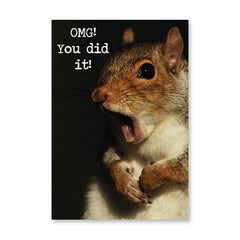 RECYCLED - Omg Squirrel