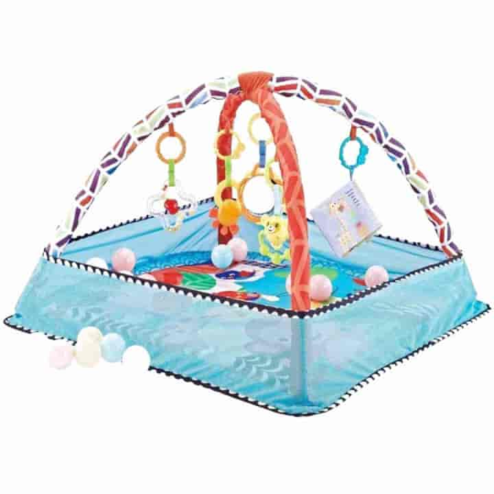 Early Fitness Education Baby Gym Mat - mybabyflame