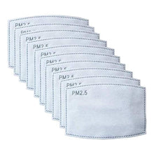 PM2.5 Activated Carbon Filters (10-Pack)