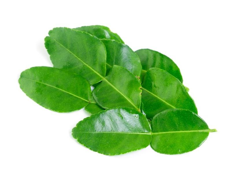 Lime Leaves - door2doorfresh.com