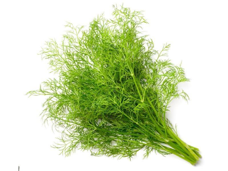 Dill - door2doorfresh.com