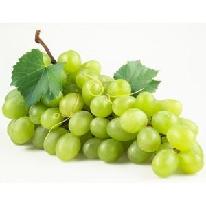 Green Grapes, Seedless - door2doorfresh.com
