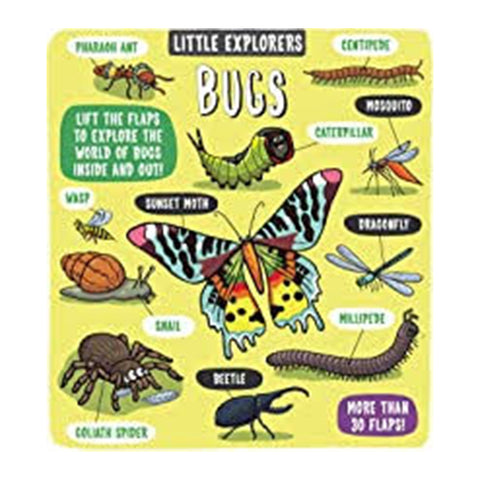 Little Explorers : Bugs