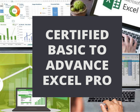 Certified Basic to Advance Excel - Hindi Version - DFMISTORE