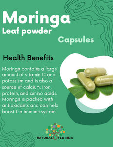 Moringa powder vegan 90 capsules - plastic bottle -