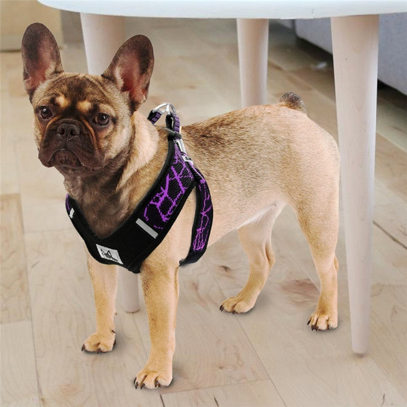Reflective Dog Harness Accessories Pet Dog Training Vest Adjustable Professional Harness Collar Vest for Small Medium Large Dogs