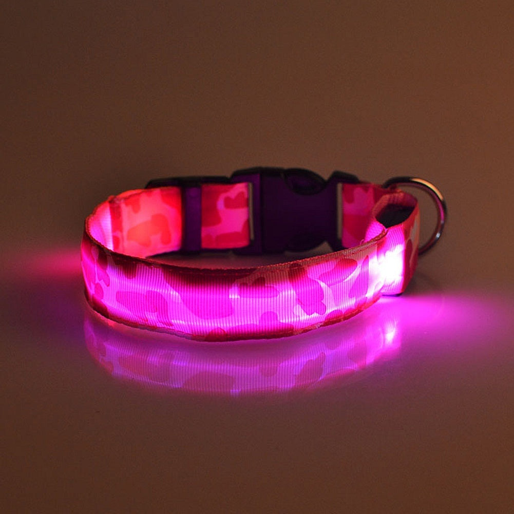 1-3Pc Fancy Lovely Pets Dog LED Lights Flash Night Shinning in the dark Safety Collar