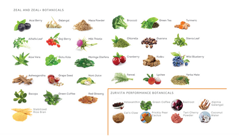 Botanical ingredients in Zurvita products.