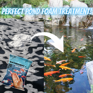 WaterPurify + Algae Control Tablets