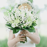 50Pcs / 200Pcs / 400Pcs / 500Pcs White Lily of the valley seed bell Orchid flowers seed home garden plant LKJ