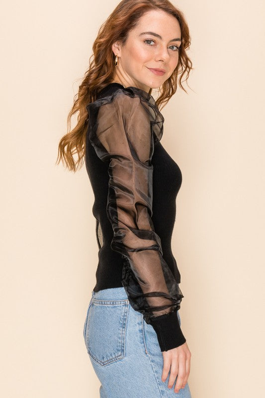 Sheer Balloon Sleeve Knit Sweater