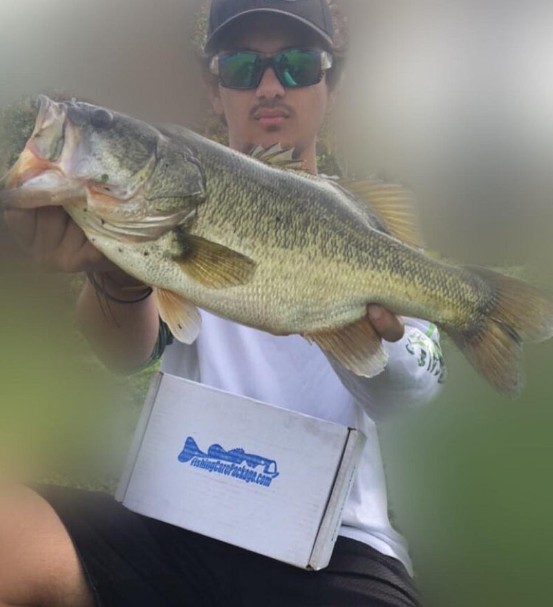 Largemouth Bass Package