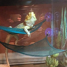 Load image into Gallery viewer, Dual Reptile Hammock
