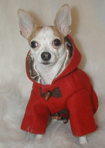 Paddington Dog Coat